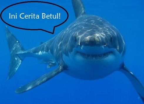 greatwhiteshark1